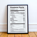 Feminist Facts Poster