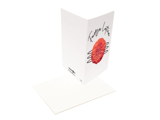 Fuerza Latina Greeting Card